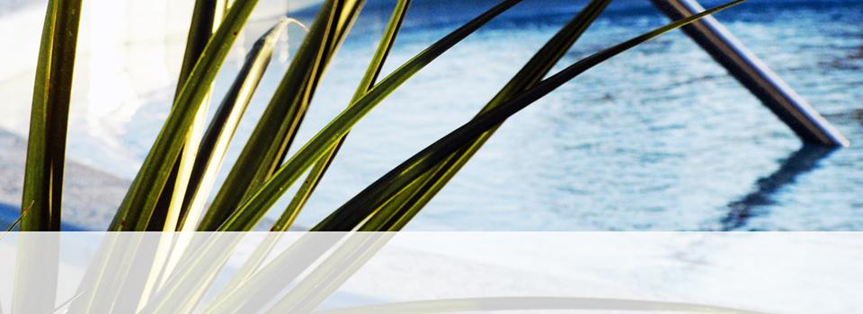 Pool_Home_sliderklein